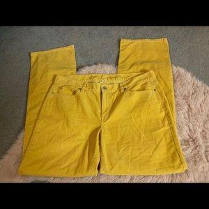 LOFT yellow cords